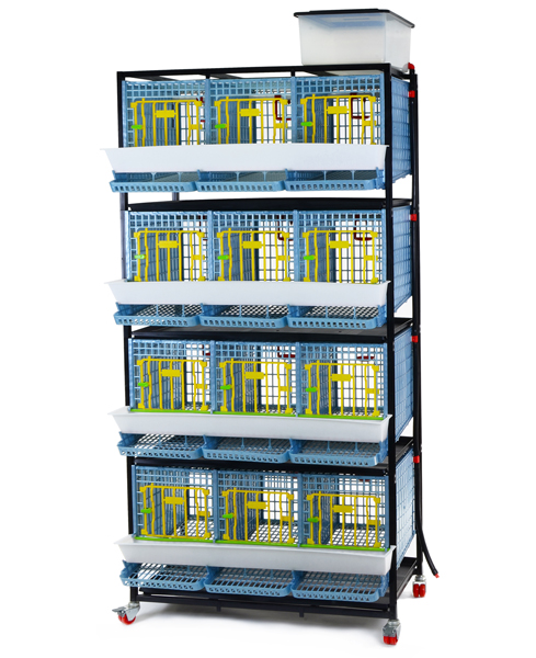 Partridge  Breeding  Stock Cages - 12 Section / 4 Tier