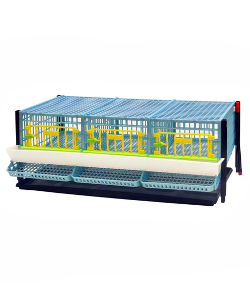 Quail Cage for Egg  - 3 Section / Tier Additional
