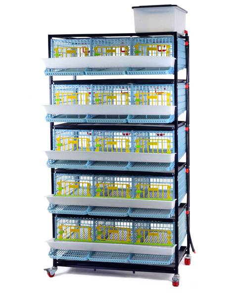 Quail Layer Cages  - 15 Section / 5 Tier